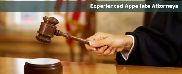 Appellate Legal Services